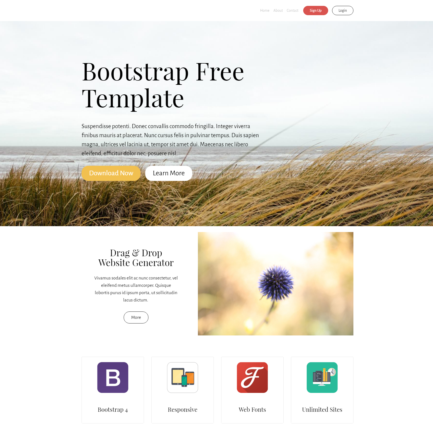 HTML5 Bootstrap PurityM Themes